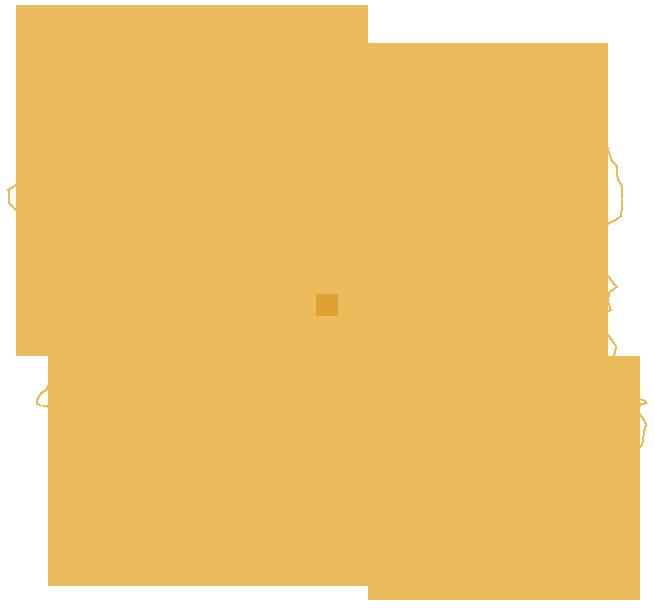 konturowa-mapa-polski-lodz