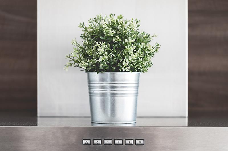 Doniczka z kwiatem - wyposażenie wnętrz
